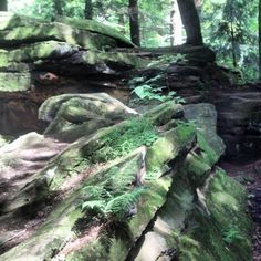 Bears den, mill creek park, Youngstown, Ohio
