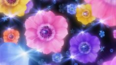 1366x768px flower computer backgrounds wallpaper by Princeton Allford