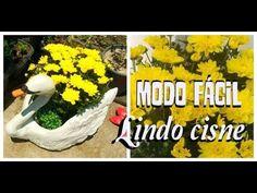 Galinha d'angola para Jardins - YouTube