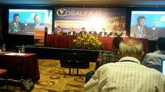 Lideranças sulamericanas debatem obrigatoriedade da vacinação contra aftosa