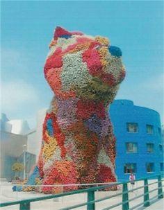 Jennifer Sills #spain #museo #dog #flowers #jennifersills #travel #colors #excitement
