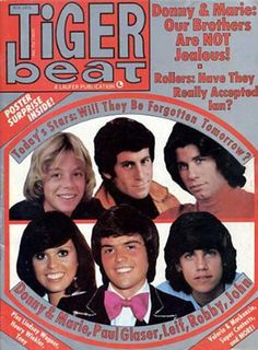 Tiger Beat magazines. Four of these gentlemen were on my wall at some point during my childhood, especially Leif Garrett