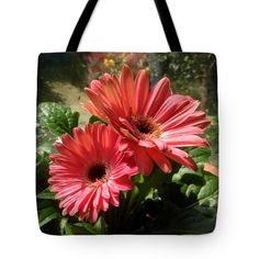 Gerberas In Coral Pink 2 Tote Bag by Joan-Violet Stretch.  The tote bag is machine washable, available in three different sizes, and includes a black strap for easy carrying on your shoulder.  All totes are available for worldwide shipping and include a money-back guarantee.