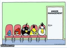 Funny pictures about Anger management. Oh, and cool pics about Anger management. Also, Anger management photos. Just For Laughs, Just For You, Humor Grafico, Anger Management, Angry Birds, Angry Angry, Angry Animals, Funny Animals, Laugh Out Loud