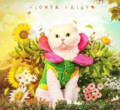 Сладкий цветочная фея кошка Customes теплая зимняя одежда для кошки домашнее животное пальто одежда
