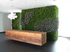 Picture result for moss wall - Empfang Outdoor Areas, Outdoor Walls, Moss Decor, Jewelry Store Design, Moss Wall, Hospital Design, Concrete Wall, Plant Wall, Modern Interior Design