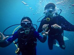Take your PADI Scuba Diving Courses in Moalboal-Scuba diving certification the Philippines-Cebu best dive sites-hidden treasure in the Philippines Scuba Diving Certification, Philippines Cebu, Scuba Diving Courses, Dive Resort, Diving Lessons