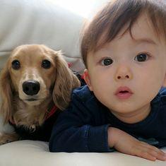 Ahaha how cute! Cute Baby Boy, Cute Little Baby, Little Babies, Cute Kids, Baby Kids, Cute Asian Babies, Korean Babies, Asian Kids, Cute Babies Photography