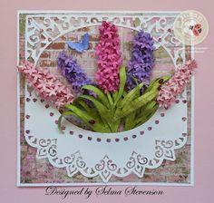 Susan's Garden Notes Hyacinthes