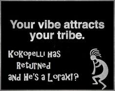 Kokopelli has returned