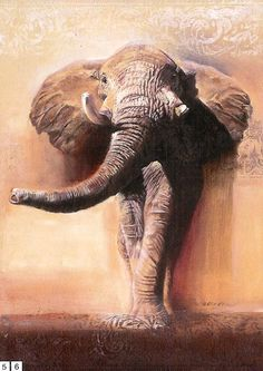 Beautiful strong African elephant