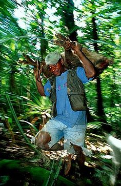 Cazador nativo con cerdo salvaje, Papua Nueva Guinea, Nueva Bretaña, Hoskins