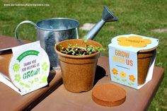plant seed sustainable gift hampers - Google Search Grow Kit, Sustainable Gifts, Gift Hampers, Planting Seeds, Google Search, Plants, Gift Baskets, Seed Starting, Plant