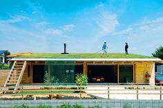平屋の芝生屋根。