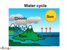 ▶ Science - Environment - Water Cycle - English - YouTube