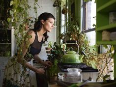 Living with Houseplants: Four Years Later in a Brooklyn Apartment