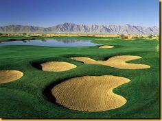 Whirlwind Golf Club - Chandler Golf Course - Cattail Chandler, Arizona