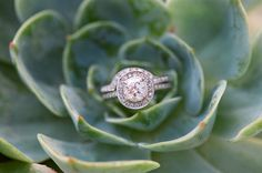 i want this engagement ring look... but i hate the bent wedding band :(