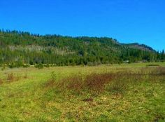 View 9 photos of this $29,000, vacant land zoned 2.00 ac lot located at Larch Ln LOT 44, Cusick, WA 99119. MLS # 201717707. Live near the Pend Oreille river ...