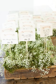 Pretty place cards lined up in baby's breath | Photography: www.styleartlife.com | Floral Design: www.ladybuglee.com