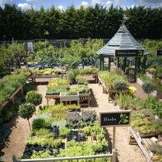 best garden centres in the uk