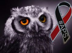 antiphospholipid Syndrome awareness mascot is the owl www.apsawareness.com Owl Wallpaper, Owl Bird, Artist Names, Design Development, Bird Feathers, Colorful Backgrounds, Jigsaw Puzzles, Birds, Portrait