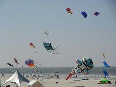 kites festival in berck