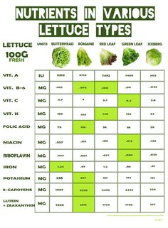 Health Benefits and Safe Handling of Salad Greens, Nutrients in various lettuce types, Iceberg Green Leaf Red Leaf Romaine Butterhead Pasta Nutrition, Cheese Nutrition, Nutrition Guide, Nutrition Plans, Health And Nutrition, Nutrition Education, Health Diet, Health