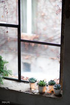 an adorable window ledge