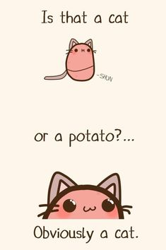 Emily's Diary Official — Obviously catato Potato Funny, Cute Potato, Potato Cat, Cute Comics, Funny Comics, Memes Humor, Kawaii Drawings, Cute Drawings, Stupid Funny Memes