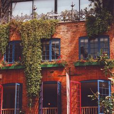 brick, blue, red, and vines <3