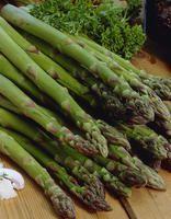 Parsa Gijnlim Asparagus, Spring, Vegetables, Garden, Flowers, Plants, Food, Studs, Garten