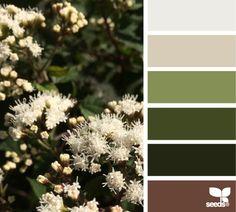"""""""La naturaleza es nuestra mejor fuente de inspiración para obtener una combinación de colores maravillosa. Aquí te dejamos la paleta del día para que la utilices en cualquier proyecto. #ColoresDeLaNaturaleza """" Imagen por cortesía de: Design Seeds"""