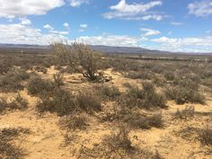 Inverdoorn Boulder Beach, Cape Town, Bouldering, South Africa, Country Roads, Outdoor, Outdoors, Outdoor Games, The Great Outdoors