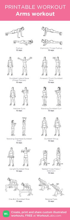 a workout to strengthen and tone your arms? Try these efficient dumbbell routines specialized for women.:Need a workout to strengthen and tone your arms? Try these efficient dumbbell routines specialized for women. Fitness Motivation, Fitness Diet, Health Fitness, Yoga Fitness, Workout Fitness, Bikini Fitness, Good Arm Workouts, Arm Toning Workouts, Printable Workouts