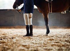 I am an equestrian.