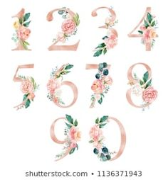 Peach cream / Blush Floral Number Set - digits 0 with flowers bouquet composition. Unique collection for wedding invites decoration & other concept ideas. Bridal Invitations, Baby Clip Art, Floral Letters, Cream Blush, Frame Clipart, Flower Frame, Peach Colors, Baby Cards, Watercolor Flowers