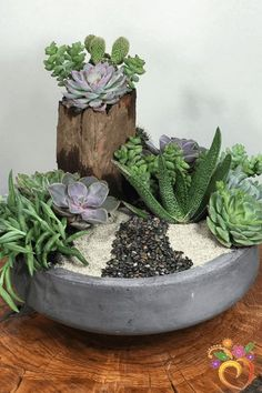 Want to send that extra something special, and have it last a lot longer than any typical flower arrangement? We love succulents, and so will whomever you are s