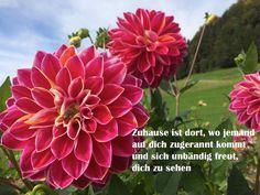 Das Gefühl, willkommen zu sein... so halten Sie Ihre Liebe lebendig...  http://www.heikeholz.de/das-gefuhl-willkommen-zu-sein/