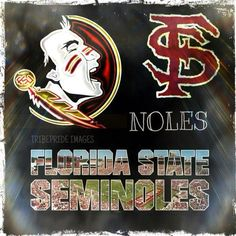 Florida State Football, Florida State University, Florida State Seminoles, College Football, Garnet, Amanda, Fan, My Love, Sports