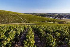 In ancient times the area of present Burgundy was populated by Celtic tribes, who had been later conquered by the Roman Empire.