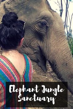 The Elephant Jungle Sanctuary is a must-do in Thailand! Getting to interact with these gentle giants is an amazing experience. Check out the post for more details!