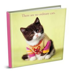 There Are No Ordinary Cats (Rachael Hale Giftbooks) by Rachael Hale http://www.amazon.com/dp/1904264271/ref=cm_sw_r_pi_dp_2DTbwb16BAGMX