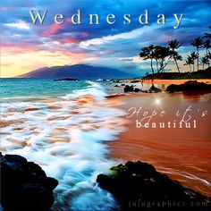 Hope It's Beautiful❣️ Happy Wednesday❣️ Wednesday Greetings, Blessed Wednesday, Good Morning Wednesday, Wacky Wednesday, Wonderful Wednesday, Good Morning Good Night, Good Morning Wishes, Good Morning Quotes, Morning Sayings