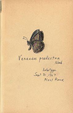 "ohfairies: "" by Vladimir Nabokov "" Vladimir Nabokov, Mood And Tone, Butterfly Drawing, Insect Art, Mail Art, Romance, Botanical Prints, Paris, Ephemera"