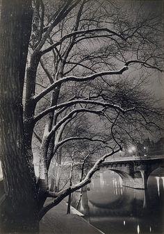 """cavetocanvas:  """" Brassaï, Les arbres des quais avec le Pont-Neuf, c. 1945  """""""