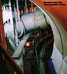 Brunswick Nuclear Plant - Torus Suppression Chamber