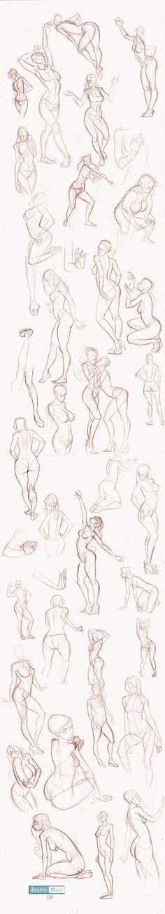 Today's Drawing Class 101: Female Anatomy | Drawing Bodies