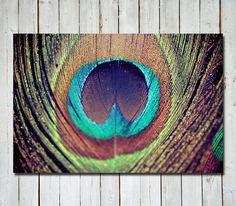 Peacock feather photograph - metallic -  unique 8x12 metallic. $32.00, via Etsy.