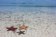 Staniel Cay, Exumas, Bahamas | Staniel Cay, The Exumas , Bahamas